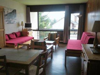 Location T2 pied des pistes  66210 Pyrénées 2000 - Bolquere vacation rentals