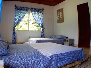 107 APT. | Big Sunny Room With Garden View - Managua vacation rentals