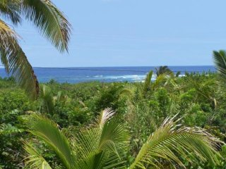 Vacation Rentals Big Island Oceanview Pualani Tropical Home, Kapoho - Ocean View vacation rentals
