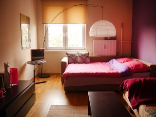 Apartment Carolina VI by the Center, free parking - Torun vacation rentals