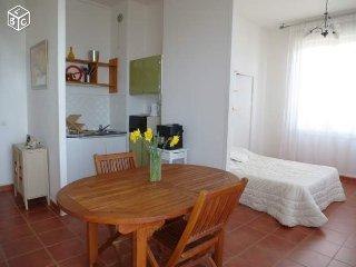 Studio 31 m2 vue sur mer Région Étretat - Saint-Pierre-en-Port vacation rentals