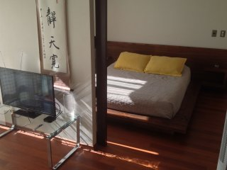 A - Apartment With Andes View - Santiago vacation rentals