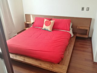 B - Apartment With Andes View - Santiago vacation rentals