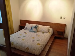 D - Apartment With Andes View - Santiago vacation rentals