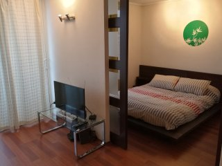 C - Apartment With Andes View - Santiago vacation rentals