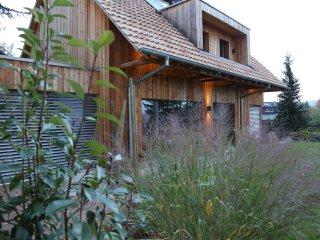 ZinnRies'Schopf - 18 pers proche Colmar - Osenbach vacation rentals