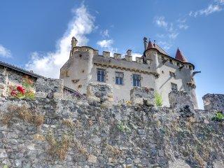 Château de Saint-Amant in Auvergne - Saint-Amant-Tallende vacation rentals