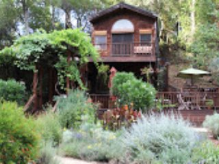 Nice House with Deck and Internet Access - Glen Ellen vacation rentals