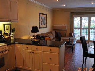 Elegant La Costa Chateau   #669 - Carlsbad vacation rentals