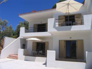 Skiathos Lago Terra Apartments with Sea View - Skiathos Town vacation rentals