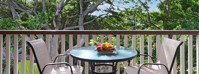 Waikomo Stream Villas #432 - Image 1 - Koloa - rentals