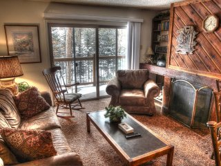 Powder Ridge 108 - Shuttle to Lifts/Walk to Town - Breckenridge vacation rentals