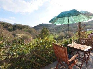 Romantic 1 bedroom House in North Devon - North Devon vacation rentals
