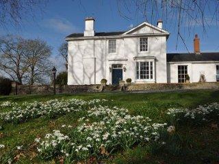1 bedroom House with Internet Access in Fladbury - Fladbury vacation rentals