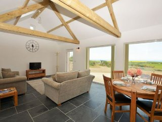 Nice 2 bedroom House in Trefin - Trefin vacation rentals