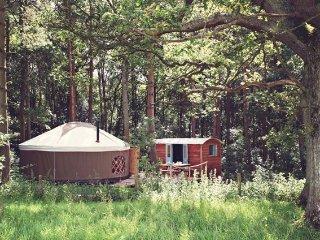 Nice 1 bedroom House in Kentchurch - Kentchurch vacation rentals