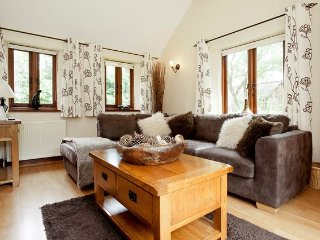 1 bedroom House with Internet Access in North Gorley - North Gorley vacation rentals