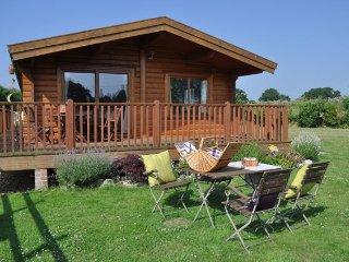 Nice 3 bedroom House in Wellow - Wellow vacation rentals
