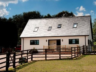 1 bedroom House with Internet Access in Blackfield - Blackfield vacation rentals