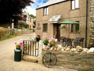 2 bedroom House with Internet Access in Menheniot - Menheniot vacation rentals