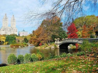 Lively 2 Bed Apt. near Central Park! - New York City vacation rentals