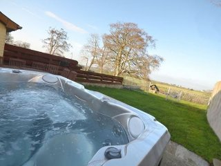 Nice House with Internet Access and Hot Tub - Capel Bangor vacation rentals