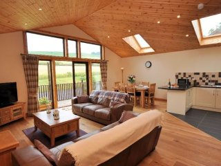 Bright 3 bedroom House in Abernyte with Internet Access - Abernyte vacation rentals
