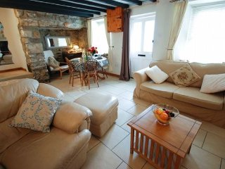 Nice 2 bedroom House in Saint Dogmaels - Saint Dogmaels vacation rentals