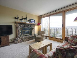 Bronze Tree Condominiums - BT301 - Steamboat Springs vacation rentals