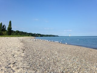Relaxing Beach Escape - Ashtabula vacation rentals