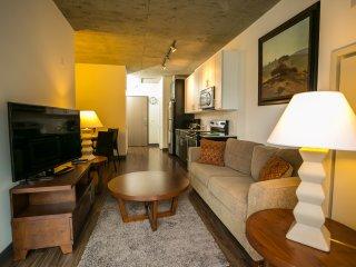 RLG2-   Furnished 1 BDR Apt in Heart of Chicago - Chicago vacation rentals