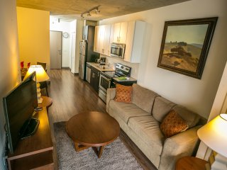 RLG3-   Furnished 1 BDR Apt in Chicago West Loop - Chicago vacation rentals