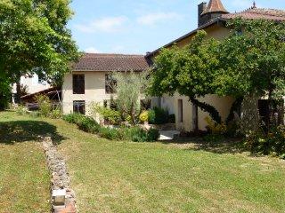 Belle maison en pierre dans un village du 13° S. - Bassoues vacation rentals