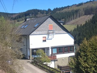 Zonnig en ruim Appartement 'Sonnenblick' - Nordenau vacation rentals