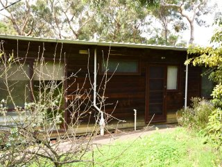 Perfect House with A/C and Television - Anglesea vacation rentals