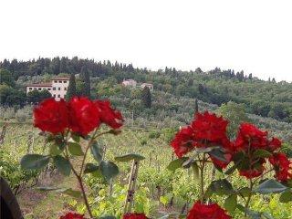 6 bedroom Villa in Rignano Sull arno, Tuscany, Italy : ref 2373075 - Rignano sull'Arno vacation rentals