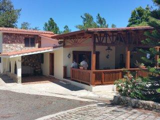 ECO MOUNTAIN VILLA - San Jose de las Matas vacation rentals