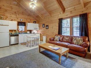 Romantic cabin w/ private hot tub, screened-in deck & dog-friendly attitude! - Sautee Nacoochee vacation rentals