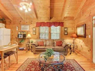 Dog-friendly log cabin w/hot tub, screened-in deck & heart-shaped jetted tub! - Sautee Nacoochee vacation rentals