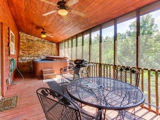 Dog-friendly cabin w/great mountain view, hot tub, air hockey, outdoor waterfall - Sautee Nacoochee vacation rentals