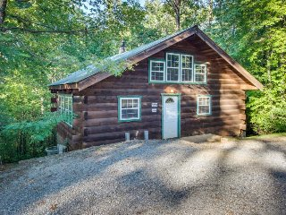 Secluded, dog-friendly cabin - screened-in deck w/ hot tub plus in-room Jacuzzi - Sautee Nacoochee vacation rentals