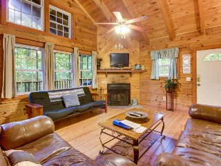 Dog-friendly and spacious Blue Ridge Mountain cabin w/ private hot tub, deck - Sautee Nacoochee vacation rentals