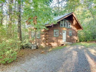 Romantic, secluded, & dog-friendly woodlands cabin with hot tub! - Sautee Nacoochee vacation rentals