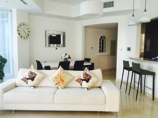 Fantastic Location Interiors, Marina Creek Views - Dubai vacation rentals