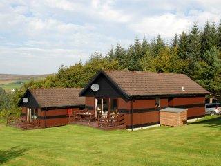 'Ben Rinnes',  near Glenlivet, Speyside, near Aviemore - Glenlivet vacation rentals