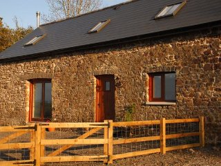Nice House with Internet Access and Hot Tub - Derwydd vacation rentals