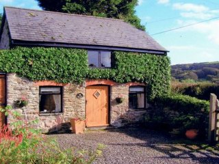 1 bedroom House with Internet Access in West Down - West Down vacation rentals