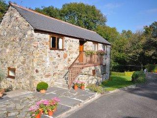 Nice 1 bedroom House in Bodmin - Bodmin vacation rentals
