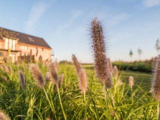 WEI: Glooiing van de velden in je interieur - Herzele vacation rentals