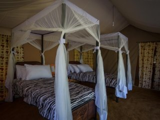 Double Tent- Serengeti Acacia Camps - Serengeti National Park vacation rentals